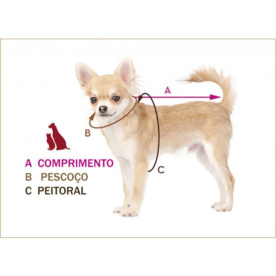 cão-modelo